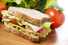 Picnic sandwich. Delicious sandwich with chicken breast, salad, cheese and tomatoes Royalty Free Stock Photos