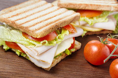 Picnic sandwiches Stock Image