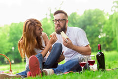 Picnic sandwiches Stock Images
