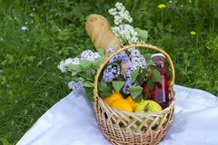 Basket with fruits for a picnic. Picnic in the park on the grass royalty free stock photos