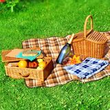 Picnic scene Royalty Free Stock Photography