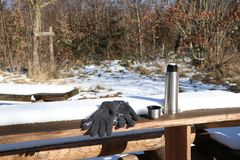 Picnic scene with thermos cup and gloves in forest royalty free stock images