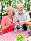 Picnic for Senior Couple Stock Images