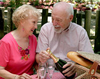 Picnic Seniors - Loving Gaze Royalty Free Stock Photos