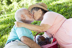 Picnic Seniors Smooch royalty free stock photography