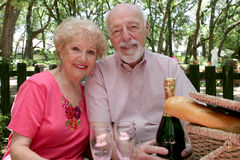 Picnic Seniors Together Stock Image