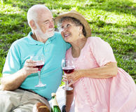 Picnic Seniors with Wine. Senior couple drink wine on a romantic picnic in the park Royalty Free Stock Photography