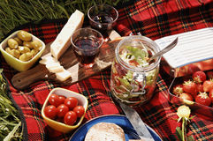Picnic serie Royalty Free Stock Photography
