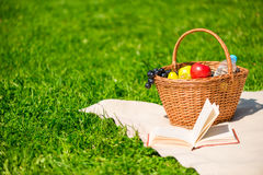 Picnic set on the blanket on the lawn. Closeup Royalty Free Stock Image