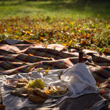 Picnic set of various food and red wine Stock Photography