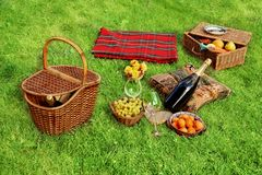 Picnic setting. With Champagne wine, grape, glasses, grape and picnic hamper, picnic basket and blanket Royalty Free Stock Images