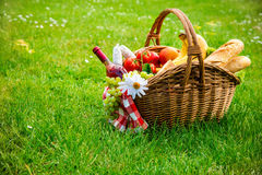 Picnic setting on meadow. With copy space Royalty Free Stock Photography
