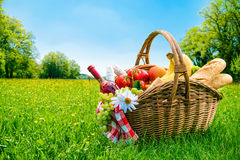 Picnic setting on meadow. With copy space Royalty Free Stock Image
