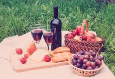 Picnic setting with red wine, cheese and fruits. Royalty Free Stock Photo