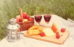 Picnic setting with red wine, cheese, lantern and fruits Royalty Free Stock Photos