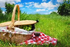 Picnic setting with wine Royalty Free Stock Photos