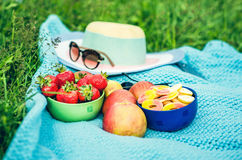 Picnic sheet with fruits on the grass, hat with sunglasses on ba Royalty Free Stock Photos