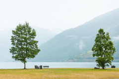 Picnic site table and benches near fjord in Norway, Royalty Free Stock Photos