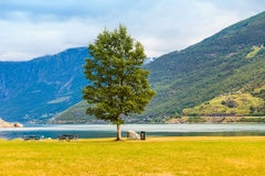 Picnic site table and benches near fjord in Norway, Stock Photos