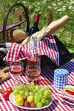 Picnic spirit Royalty Free Stock Photos