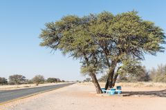 Picnic spot next to the B1-road near Rehoboth. A picnic spot under a camel-thorn tree next to the B1-road near Rehoboth, a town in the Hardap Region of Namibia Royalty Free Stock Photo