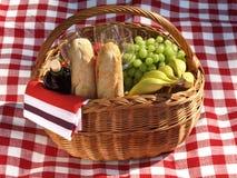 Picnic - spring season Royalty Free Stock Photography