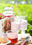 Picnic with strawberry, cookies, strawberry milk, jelly and maca Royalty Free Stock Photography