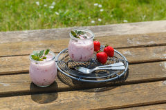 Picnic with strawberry yogurt Royalty Free Stock Images