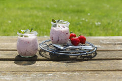 Picnic with strawberry yogurt Royalty Free Stock Photos