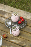Picnic with strawberry yogurt Royalty Free Stock Photo