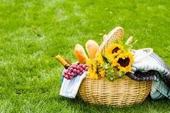 Picnic. Summer picnic with a basket of food in the park Stock Images