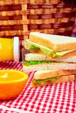 Picnic. Summer Time Rest. Picnic. Red checked tablecloth, basket, healthy food sandwich and fruit, orange juice.  Summer Time Rest Stock Images
