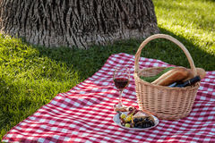 Picnic. Summer wine picnic in the park with wine and cheese Stock Image