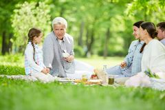 Picnic on sunny day Stock Photos