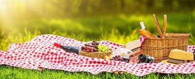 Picnic on a Sunny Day. With Red Grapes and Wine royalty free stock image