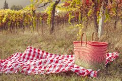 Picnic at sunset in the hills of Italy. Vineyards and open nature in the fall. Romantic dinner, fruit and wine. Copy space. Free stock image