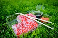 Picnic Sushi all'aperto un giorno di estate Immagini Stock
