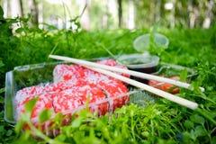 Picnic Sushi all'aperto un giorno di estate Fotografia Stock