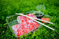 Picnic. Sushi outdoors on a summer day. Day off in the park stock images