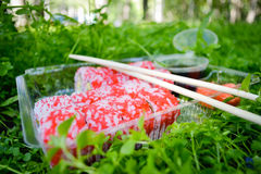 Picnic. Sushi outdoors on a summer day Royalty Free Stock Images