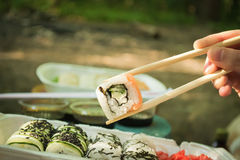 Picnic. Sushi outdoors on a summer day. Day off in the park royalty free stock images