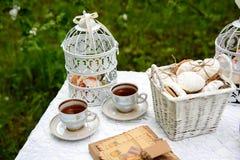 Picnic - tè e biscotti Fotografia Stock