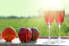 Picnic - tabe with wine fruits and sun Stock Photo