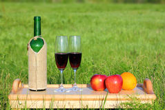 Picnic - tabe with wine and fruits Royalty Free Stock Photography