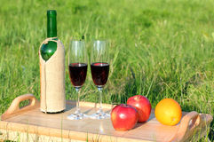 Picnic - tabe with wine and fruits Stock Photo