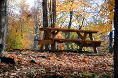 Picnic table. Picture of a picnic table in a forest during the autumn season Royalty Free Stock Photo
