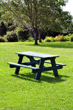 Picnic table. At park on a sunny day Royalty Free Stock Photography