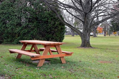 Picnic table. In autumn park with trees Royalty Free Stock Images