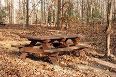 Picnic Table. At a state park in Delaware in the fall Royalty Free Stock Images