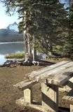 Picnic table. Located on the shore of an Oregon cascade lake with Mt. Washington in the back ground Stock Photos